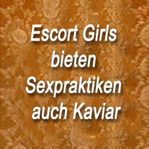Escort Girls bieten Sexpraktiken auch Kaviar